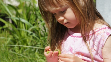 Sienna with a caterpillar of the Privet Hawk Moth
